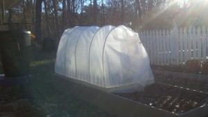 Frugal Low Cost Cold Frame